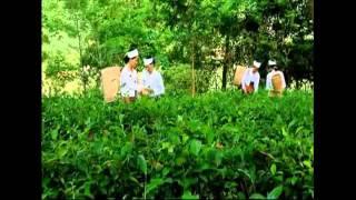 Hoa Binh Vietnam  city pictures gallery : Luong son Hoa Binh, Vietnam