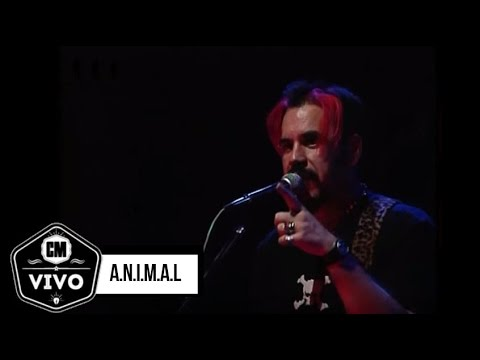 Animal video CM Vivo 2002 - Show Completo
