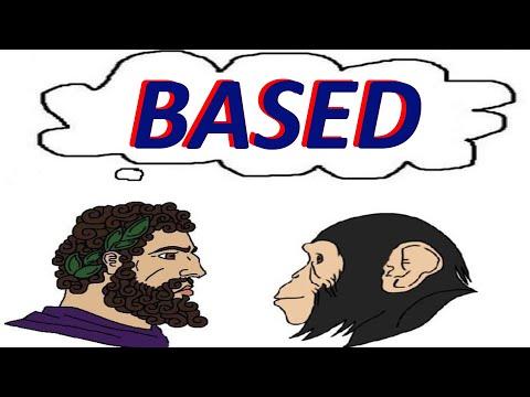 Based/ Return to Monkey Analysis