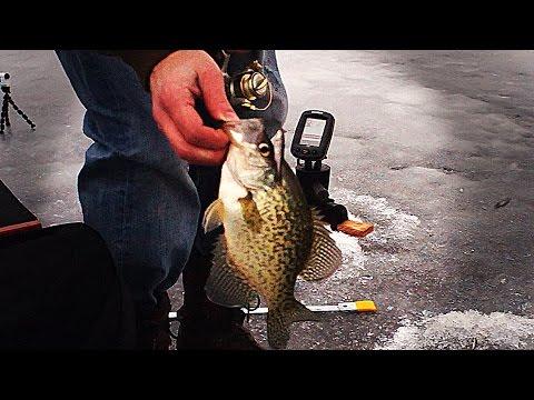 Crappie Ice Fishing Frenzy!!!