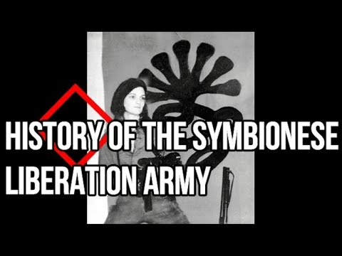The Dragon Unleashed! What Was the Symbionese Liberation Army