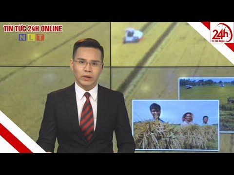 Bản tin Thời sự Nông thôn ngày 28/03/2020 | Tin tức Việt Nam mới nhất | Tin tức 24h