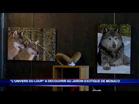 Exposition l 39 univers du loup au jardin exotique de - L univers du jardin les rues des vignes ...