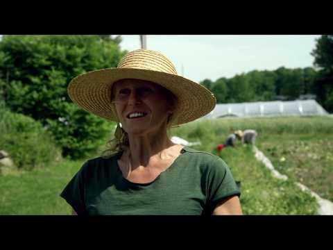 La ferme et son état