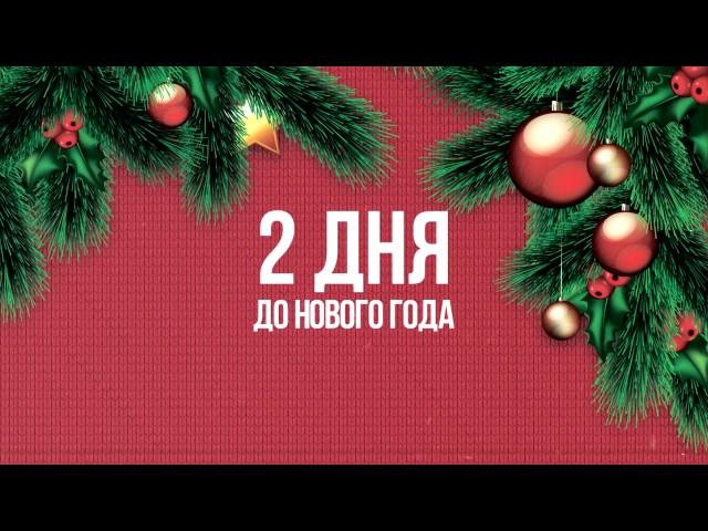 Оренбуржцы о новогодних желаниях. Миша Карин