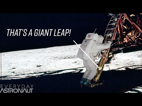 Why Were There Missing Rungs On The Lunar Lander's Ladder?