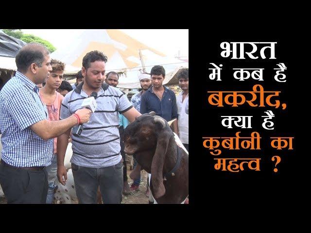 Bakrid 2018 पर क्या है खास बकरा बाजार में, क्या भाव बिक रहे हैं बकरे ?
