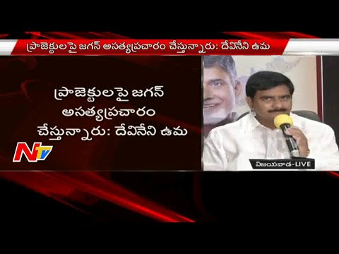 YS Jagan Is Acting Like A Mental Patient : Minister Devineni Uma Fires On YS Jagan