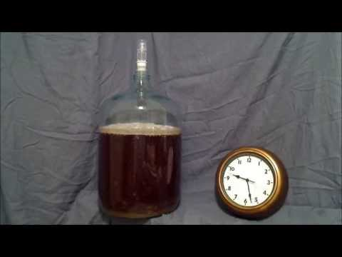 , title : 'Beer Fermentation Time Lapse'