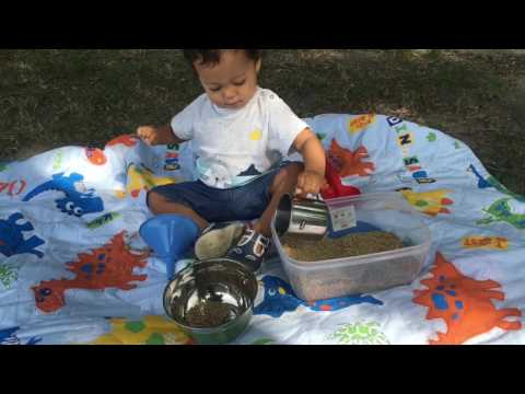 Attività Montessori 12-18 mesi. IL GIOCO DEI TRAVASI!