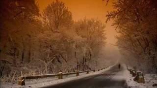 Very Chill Iranian Song - Shajarian
