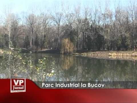 Parc industrial la Bucov