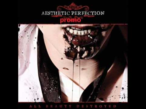 Aesthetic Perfection- The 11th Hour
