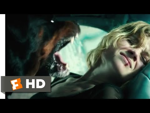 Don't Breathe (2016) - Trapped in a Car Scene (9/10) | Movieclips