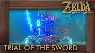 Zelda Breath of the Wild - Trial of the Sword (Middle Trials). This video shows you a walkthrough of the Trial of the Sword (middle) and how to upgrade the Master Sword.►ZELDA: BREATH OF THE WILD - WALKTHROUGH PLAYLIST: https://goo.gl/YLpbte►Twitter: https://twitter.com/beardbaer►Game Informations:▪ Title: The Legend of Zelda - Breath of the Wild▪ Developer: Nintendo▪ Publisher: Nintendo▪ Platform: Switch, Wii U▪ Genre: Action-adventure▪ Playtime: 25+ hours