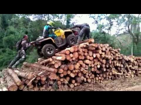 Crazy Boys Subindo a pilha de lenha em Corupa 2004