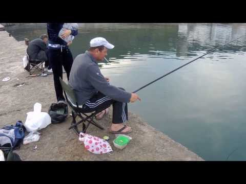 рыбалка в веселом крым
