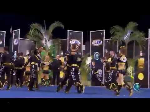 Top Gun All Stars - Large Coed [2014 Senior Large Coed Finals] MultiCam