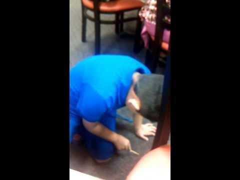 Kid eating off the floor at a restaurant