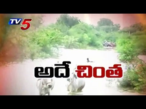 Pulichinthala Disputes B/w AP&TG : TV5 News