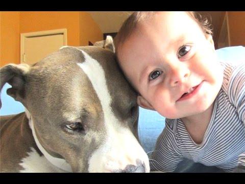Resultado de imagen de bebes con mascotas