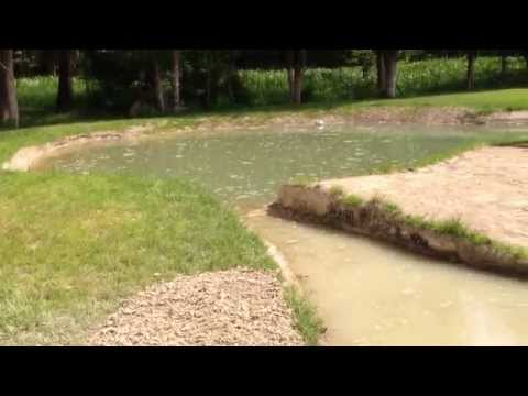 Fishing Pond X2 Progress – Was that a Bass?