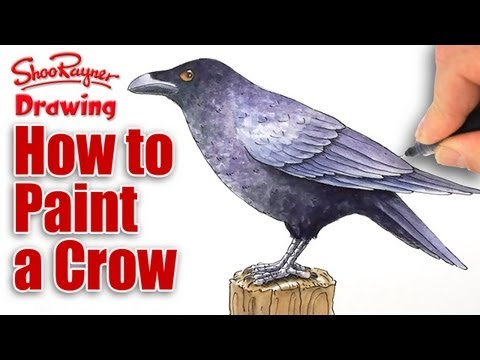 How to Paint a Crow in Watercolour