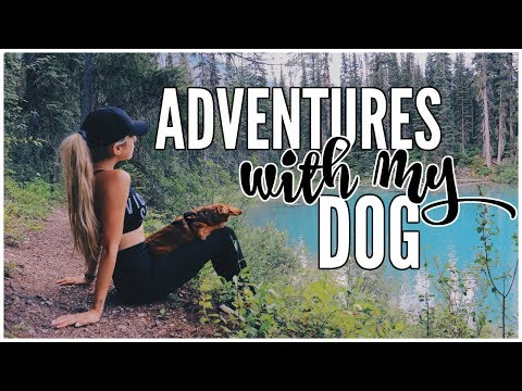 My Mountain Adventure | Camping & Castles