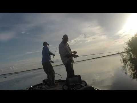 venice fishing 7 16_Horg�szat vide�k