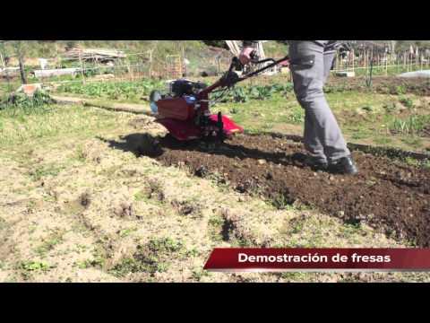 Adquiera su motoazada 500 en la mejor tienda agrícola,www.maquinariadejardineria.net 692829022