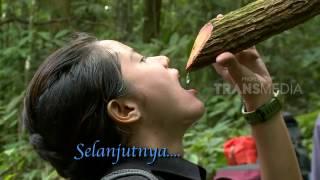 Video INDONESIAKU - TERPURUK DIATAP MERATUS (7/2/17) 3-1 MP3, 3GP, MP4, WEBM, AVI, FLV Januari 2019