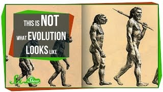 SciShow -  This is NOT What Evolution Looks Like