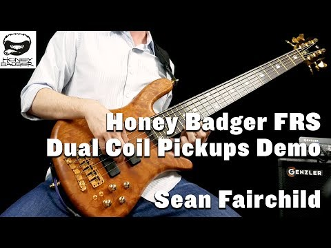 Sean Fairchild - Honey Badger Pickups Demo