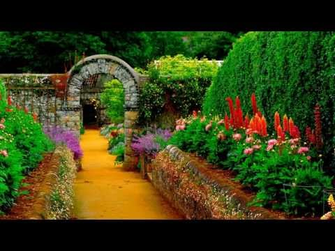 Hotnewhiphop - Who doesn't love a garden? It fits the song too if you ask us :) Support the artists! Download Ty Dolla $ign's Sign Language here http://www.datpiff.com/Ty-D...
