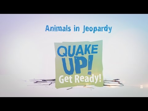 Animals in Jeopardy