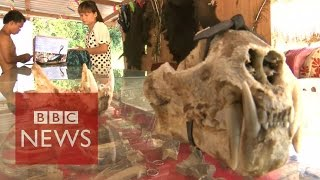 Video Undercover in Myanmar's Sin city where anything goes - BBC News MP3, 3GP, MP4, WEBM, AVI, FLV Februari 2019