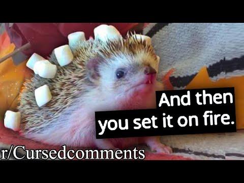 r/Cursedcomments | PLEASE NO