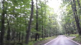 Harbor Springs (MI) United States  city images : Tunnel of Trees Harbor Springs, Michigan Highway 119
