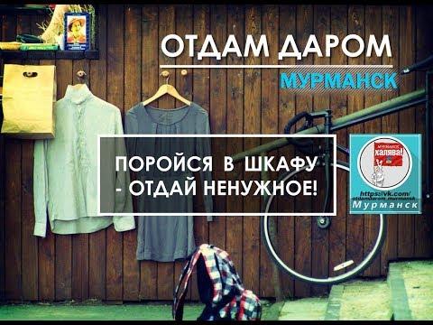 ОТДАМ ДАРОМ МУРМАНСК
