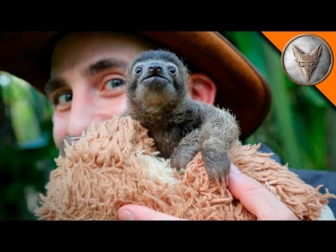 Coyote Peterson Meets a Ridiculously Adorable Baby