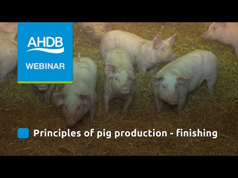 AHDB Pork Principles of Pig Production Finishing & Growing