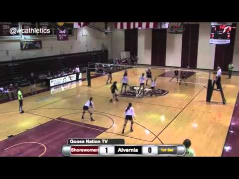 Washington College Volleyball - Daunoras Career Block Record