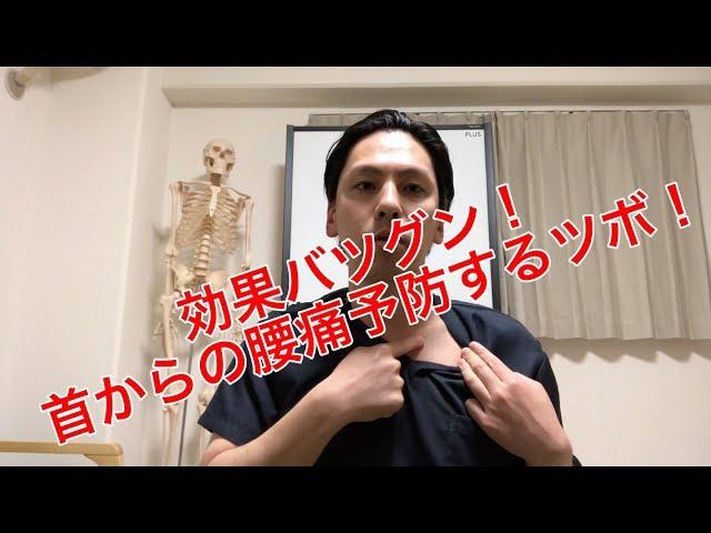 【高槻 腰痛】首からの腰痛予防するツボ!