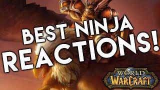 Video 5 BEST Ninja Loot Reactions in World of Warcraft MP3, 3GP, MP4, WEBM, AVI, FLV Juni 2018