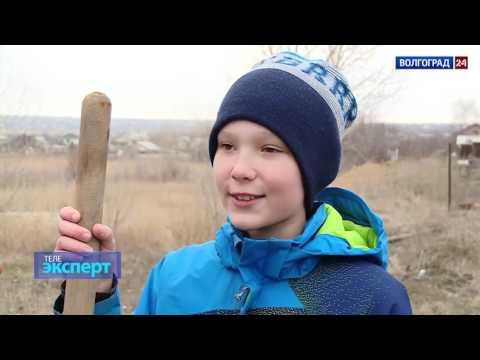 Выходные с ребёнком. Выпуск от 28.03.2017