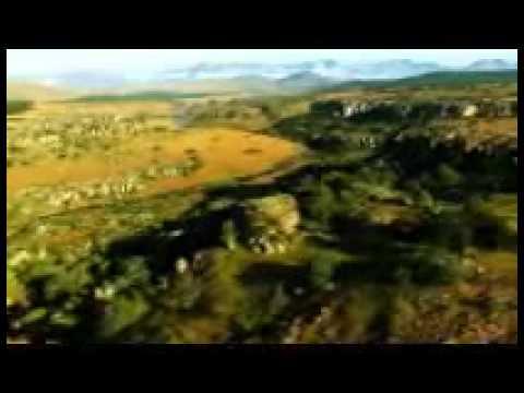 Phim Thế Giới Động Vật   HD 720p Part1
