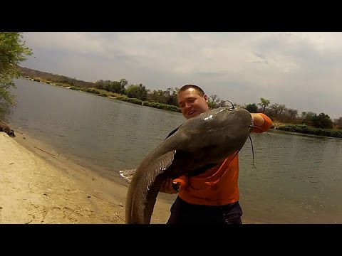 monster - Every year, Barry Egenes and his brother return to their home in Africa for an epic fishing trip. Last year, they traveled to Zimbabwe to hunt the giant catfish known as Vundu. Shot 100% on...