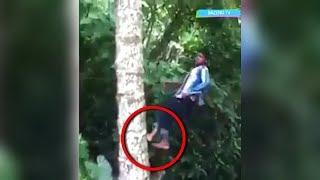 Download Video Kalau Tak Direkam, Kalian Tak Akan Percaya Pria Sakti ini Panjat Pohon Pakai Kaki! Sungguh Aneh! MP3 3GP MP4