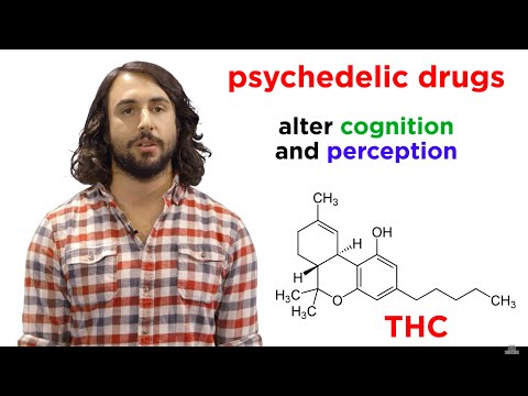 Illicit Drugs: How Do They Work?