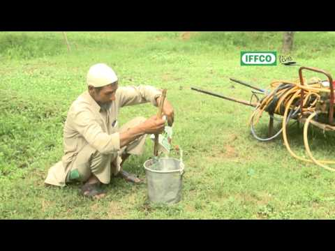 How to use water soluble fertilizers effectively